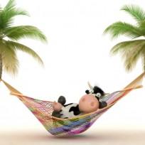 vacaciones-en-verano-3371-1024x640