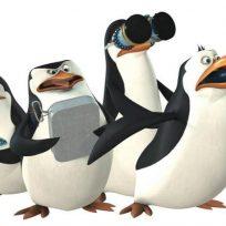 el-spin-off-madagascar-pinguinos-madagascar-y-l-m2cchn