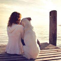 Perro disfruta con su amo mirando el mar