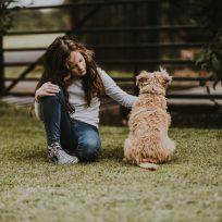 observar-perro-con-detenimiento