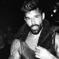 Ricky martin concierto artista música latina