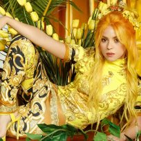 shakira cantante artista música latina