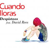despistaos david rees cuando lloras artistas música en español