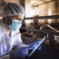 coronavirus covid pandemia gripe
