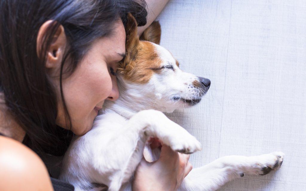 perro salud perruna mujer actos veterinario