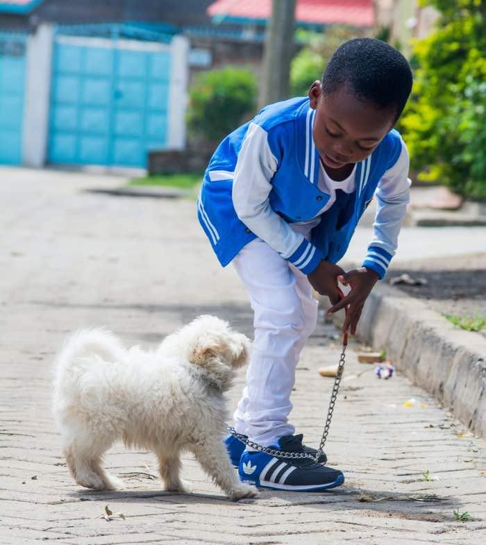 niño perro